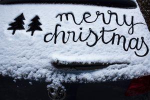 christmas-tree-3825102_640