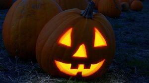 pumpkin-2853742_640